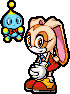 File:Sonic Advance 3 Cream.png
