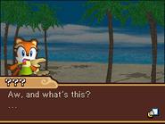 Sonic Rush Adventure Marine2