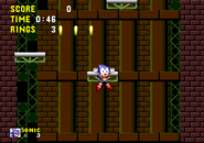 Bottomless Pit Sonic 1