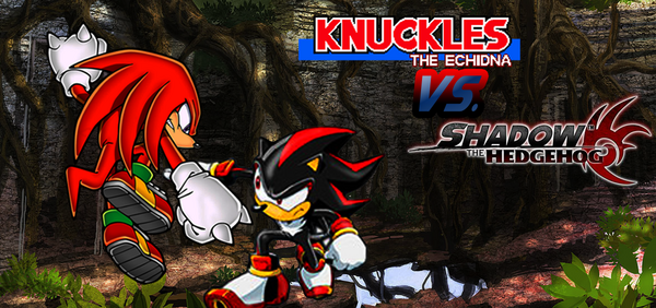 Knuckles-v-Shadow