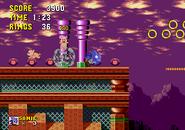 Picky-Sonic-1