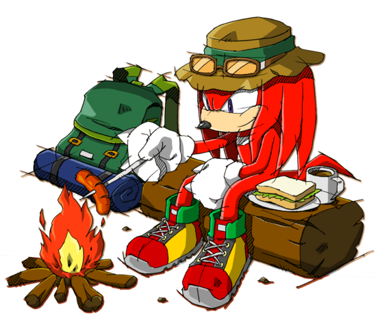 File:Wallpaper 142 knuckles 11 pc .png