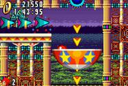 Casino Paradise IV