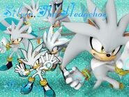 Silver The Hedgehog Wallpaper FlopiSega