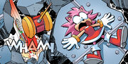 Knuckles Vs Amy