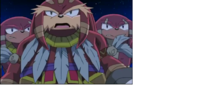 Knuckles Clan (Sonic X)