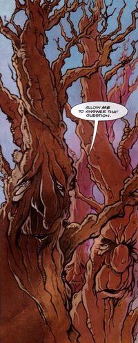 STC94-Trees