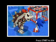 Sonic & Dry Bowser