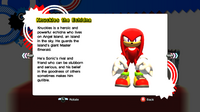 Knuckles profile SG.png