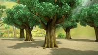 Beige berry trees