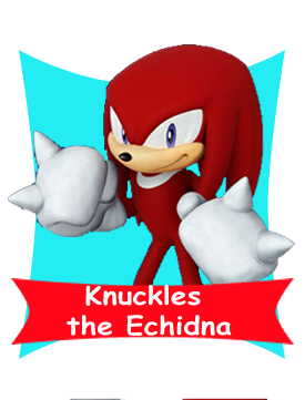 File:Knuckles card happy.png