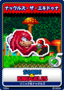 Sonic & knuckles 13 Knuckles