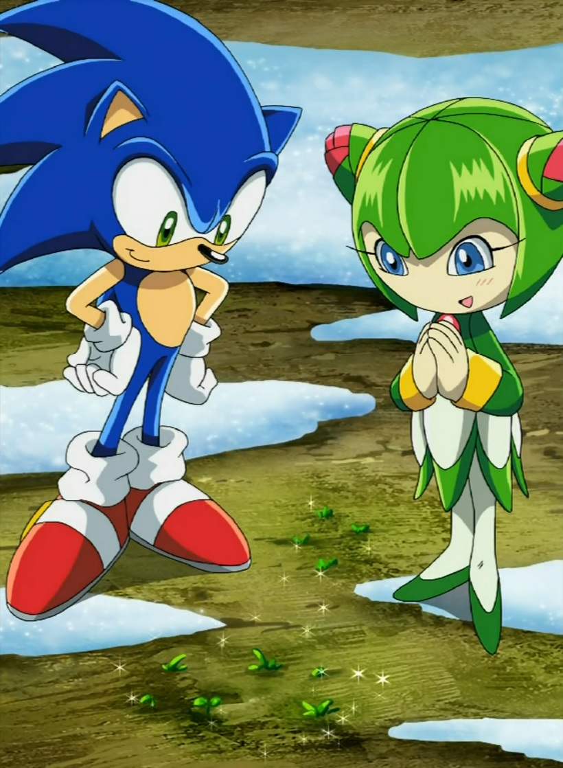 File:Sonic and Cosmo.jpg