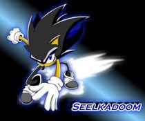 Seelkadoom image 1