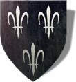 blason dans The Witcher 2