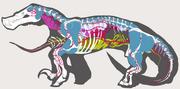 Anatotal