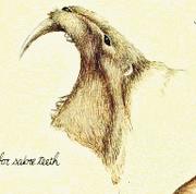 Female bardelot mouth