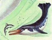Porpin lifs