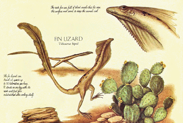 evolution island iguana experiment Island biogeography and evolution is an activity about the evolution of three species of lizards on the canary islands it is designed for high school biology.