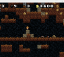 Funny and Interesting Tricks for Spelunky