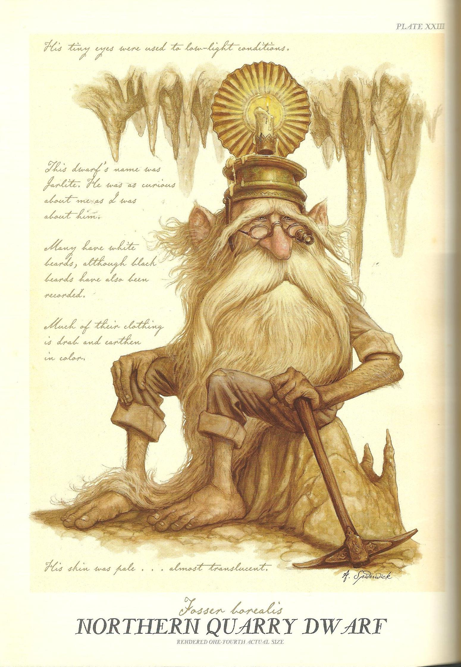 Arthur Spiderwick's Field Guide to the Fantastical World ...