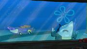Shark Lightning in Sharks vs. Pods5