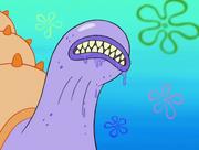 Mother Sea Whelk.