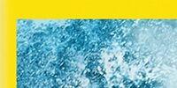 The SpongeBob Movie: Sponge Out of Water (DVD)