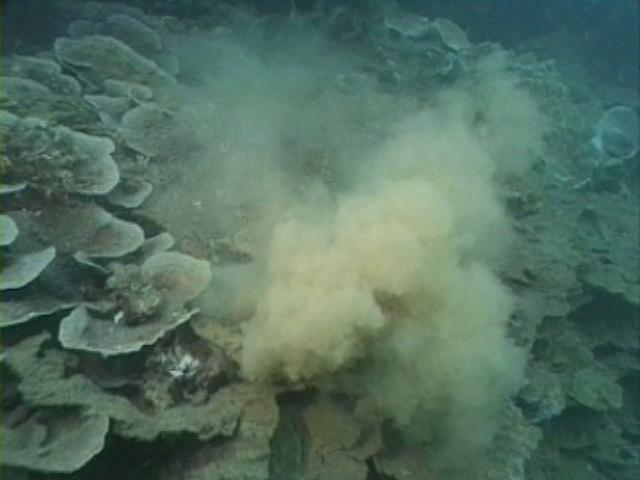File:Case of the Sponge Bob 151.png