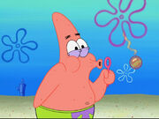 Patrick create Chilli Bubble