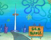 Sea needle