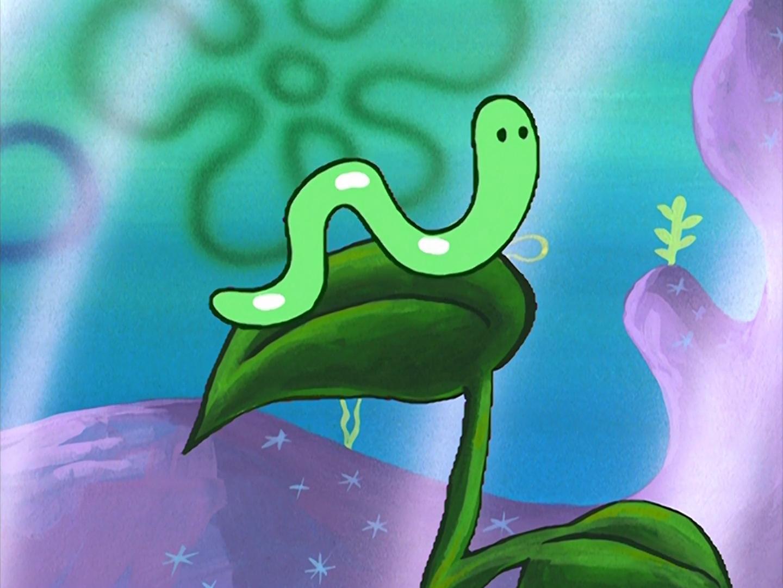 The Complete Ninth Season   Encyclopedia SpongeBobia   Fandom
