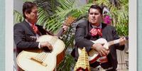 Mexico 2 (gallery)