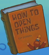 How to Open Thing 1st Edition