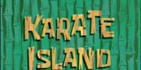 122 Conch Street/gallery/Karate Island