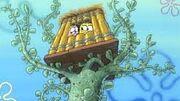 Club sponge