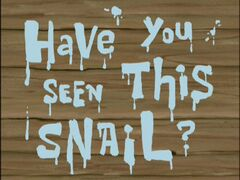 Have You Seen This Snail?