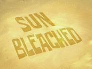 Sun Bleached