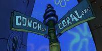 Coral Avenue