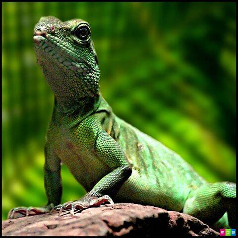 File:Lizard display.jpg