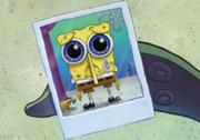 Spongebob crying
