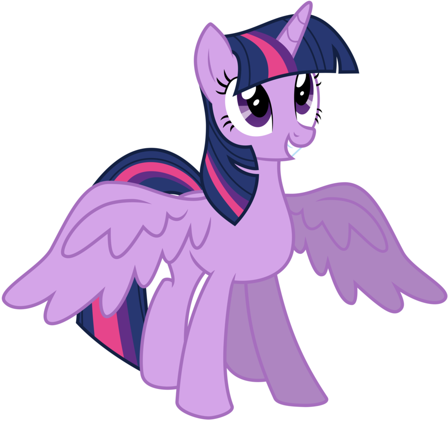 - My Little Pony Friendship Is Magic!: Princess Twilight Sparkle
