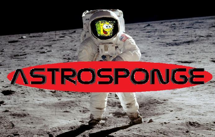 AstroSponge