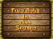 2 Jobs in 1 Sponge
