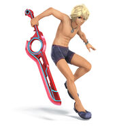 Shulk Pallette 08