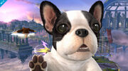 Smash 4 assist trophy nintendog