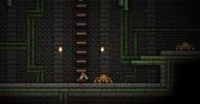 Sewers Small