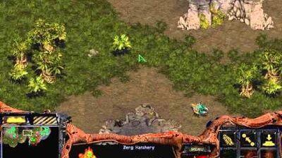 Starcraft Original Zerg - Campaign Mission 9 The Invasion of Aiur Walkthough Lets Play