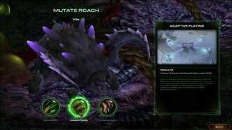 Starcraft 2 Heart of the Swarm - Evolution Pit Mutations & Evolution Mission Evolutions