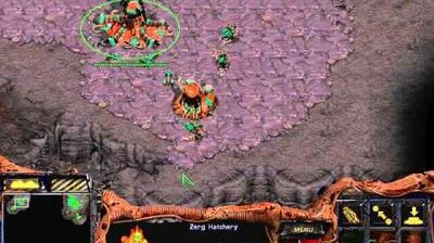Starcraft Original Zerg - Campaign Mission 8 Eye for an Eye Cinematic Walkthough Lets Play